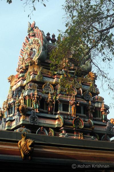 Adhipureeswarar-Temple-Chintadripet1