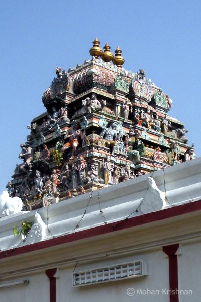 Chennamalleeeswarar-Temple-Sowcarpet1