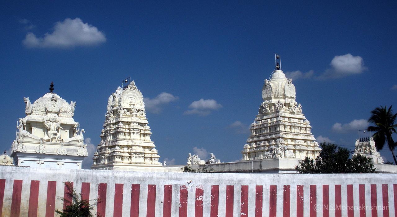 Choleeswarar-Temple-Arcot-Kuppam