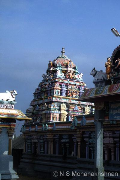 ariyathurai-varamorthi1