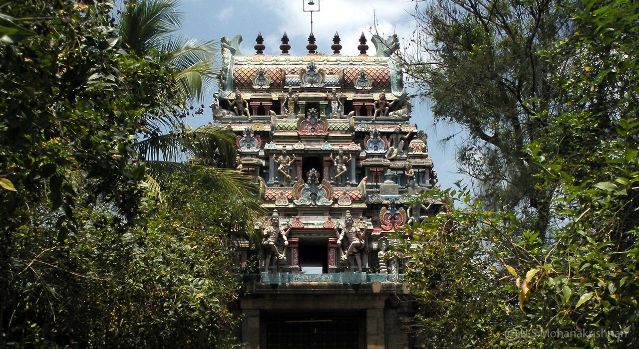 Thirukadambur-Amirthakadeswarar-Temple