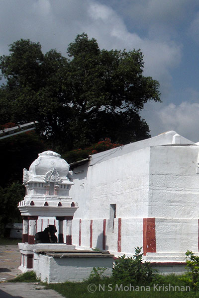 Ekkadu-Panchavarneswarar-Temple2