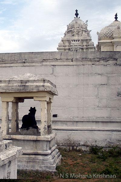 Nambakkam-Mantheeswarar-Temple3