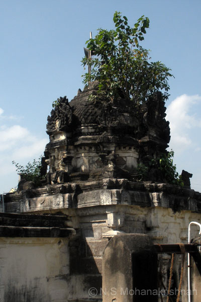 vikravandi-agastheeswarar-4