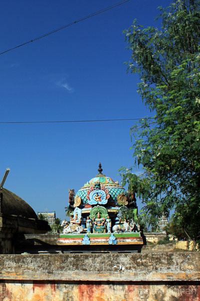 aduthurai-sivan-3