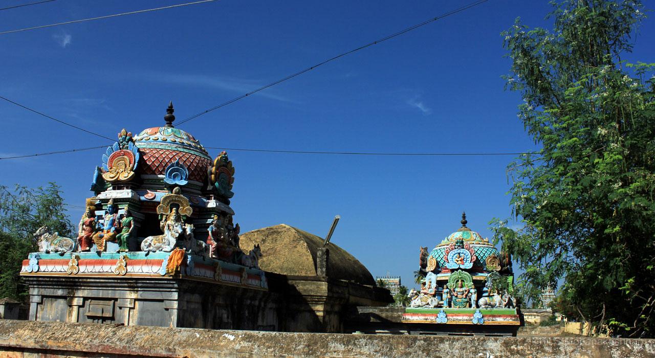 aduthurai-sivan-6