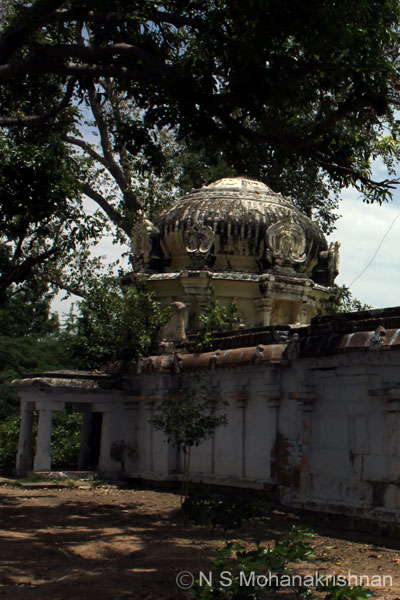 pasupatheswara-trich-3