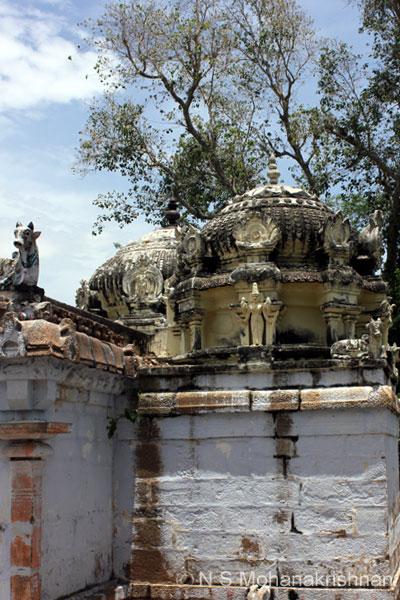 pasupatheswara-trich-4