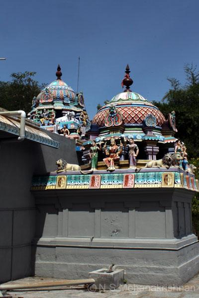 nirudee-pulavarnatham-5