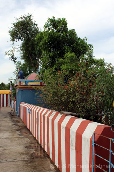 dhundubees-sengalipuram-4