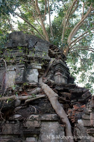 kunteswarar-drmpuram-2