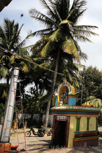 lakshminarasimhar-varadanap3