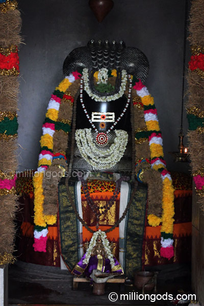 simha-avaniapuram-6