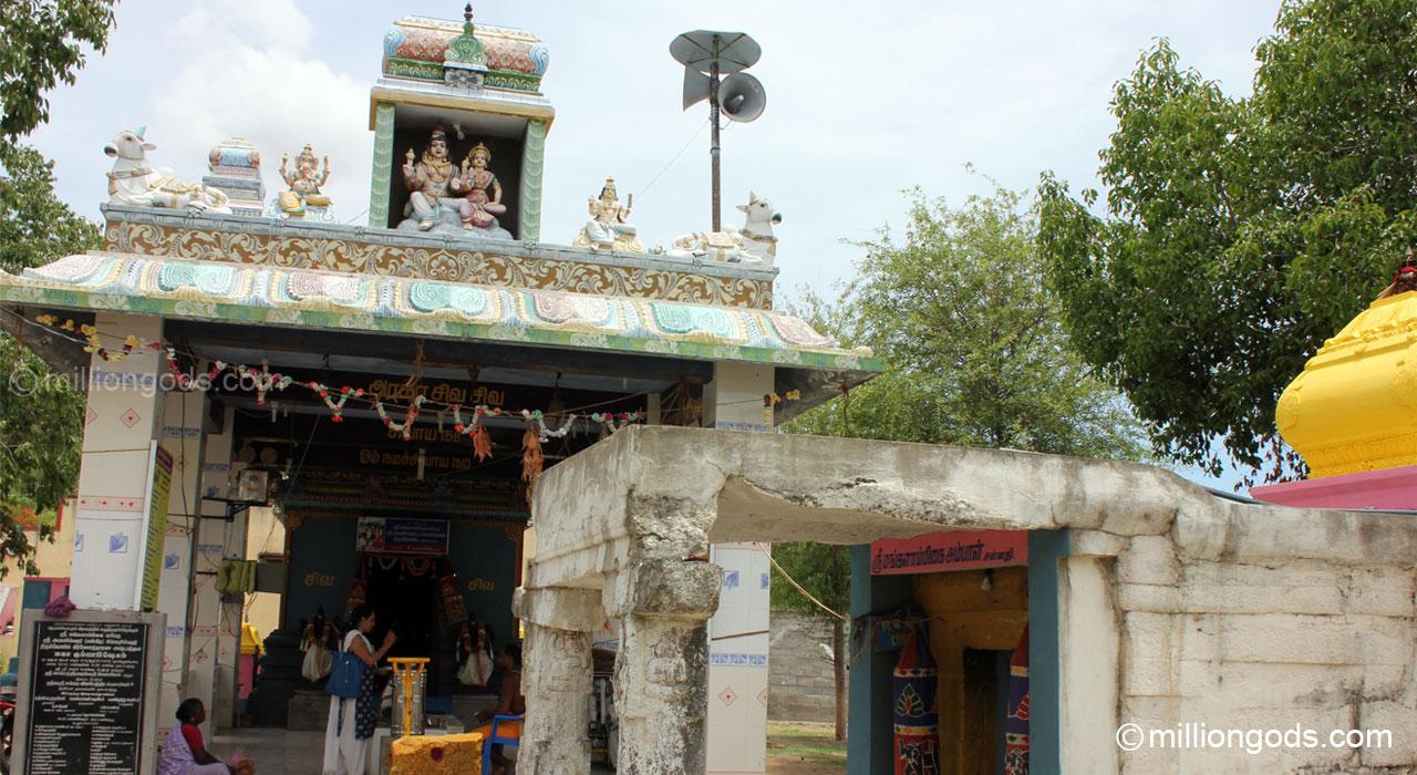 simha-avaniapuram-7